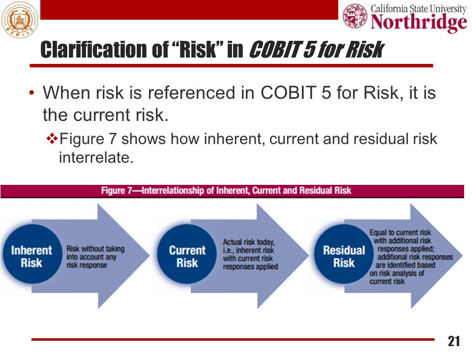 Clarification of Risk in COBIT 5 for Risk