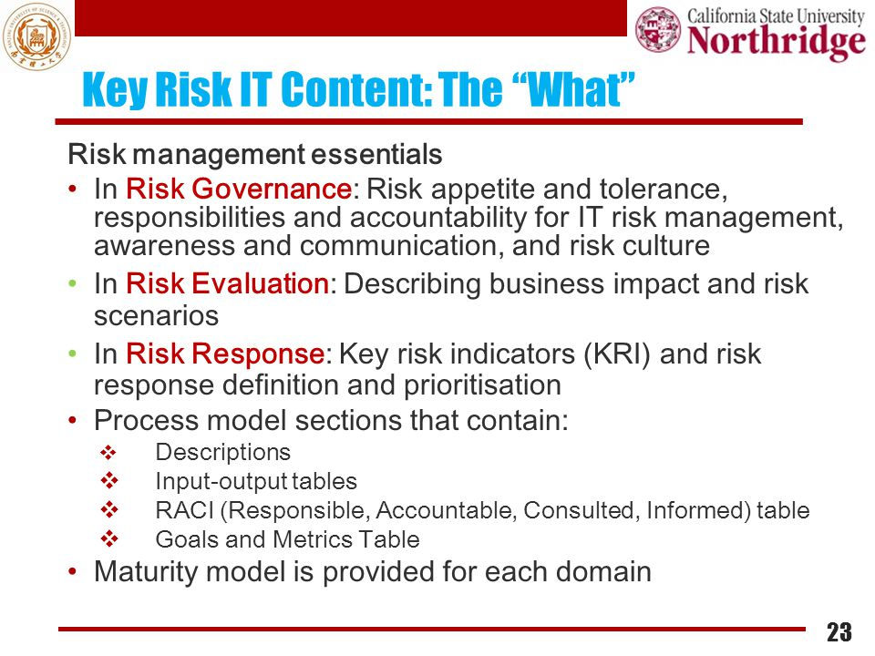 Key Risk IT Content: The What