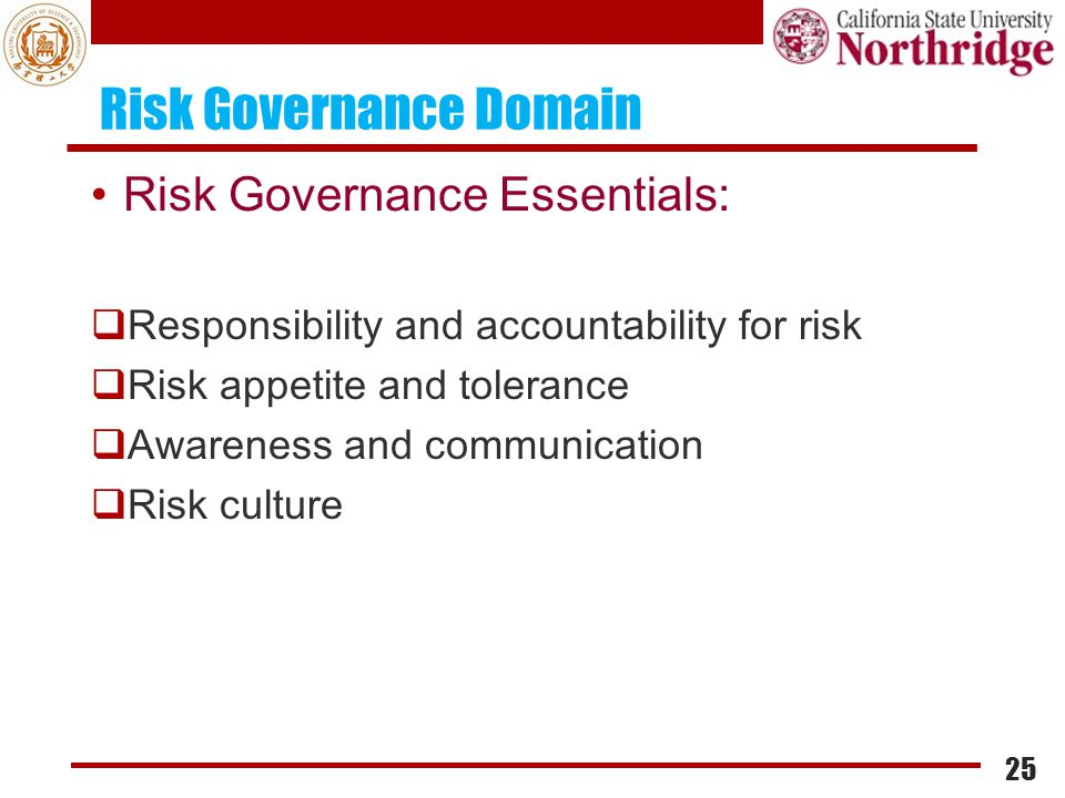 Risk Governance Domain