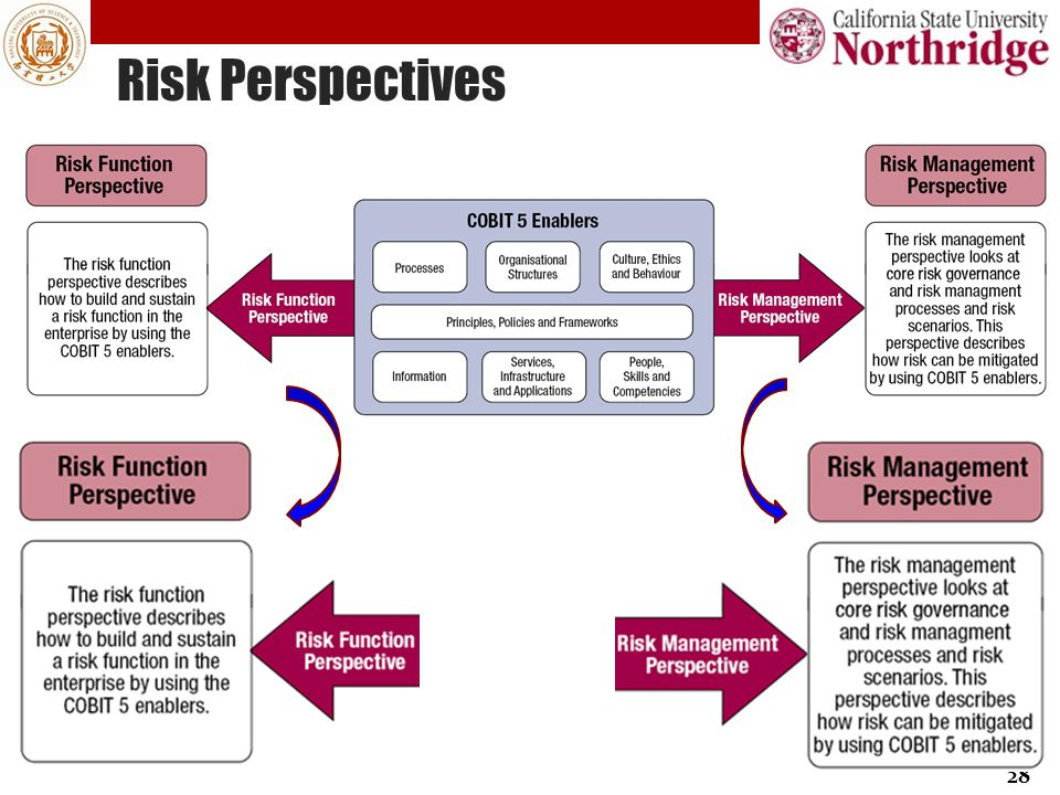 Risk Perspectives 28
