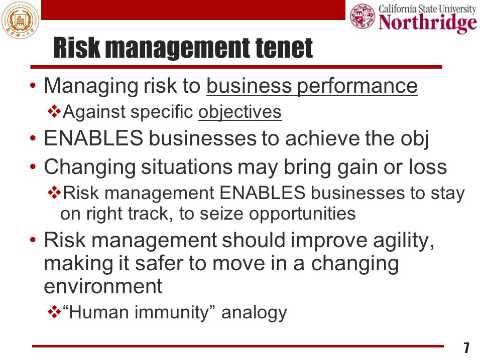 Risk management tenet Managing risk to business performance