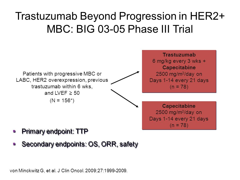 Trastuzumab Beyond Progression in HER2+ MBC: BIG 03-05 Phase III Trial