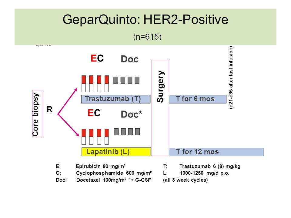 GeparQuinto: HER2-Positive (n=615)