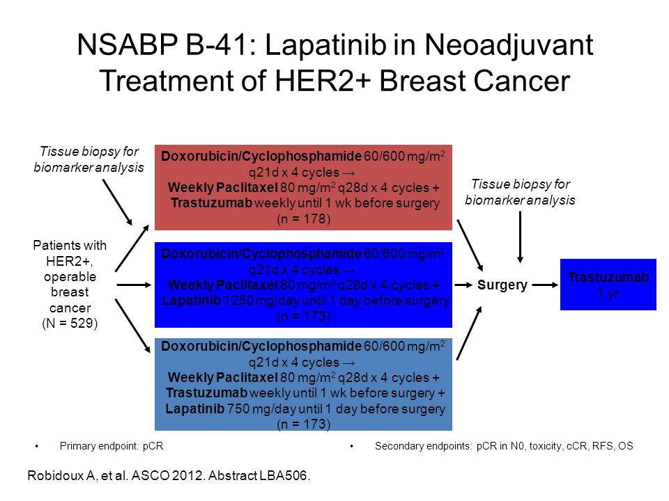 NSABP B-41: Lapatinib in Neoadjuvant Treatment of HER2+ Breast Cancer