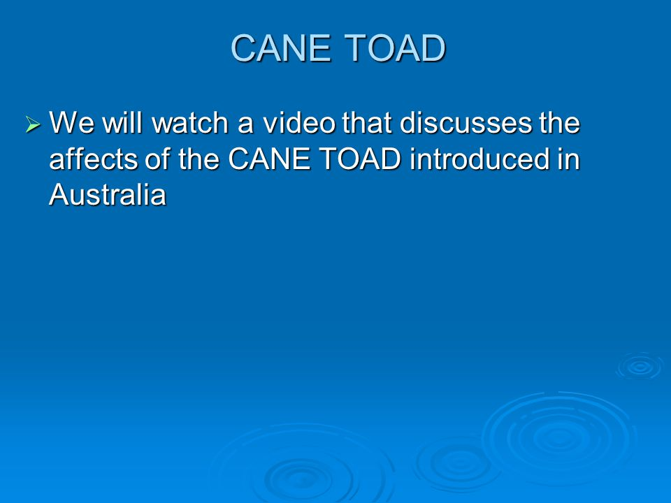 CANE TOAD We will watch a video that discusses the affects of the CANE TOAD introduced in Australia