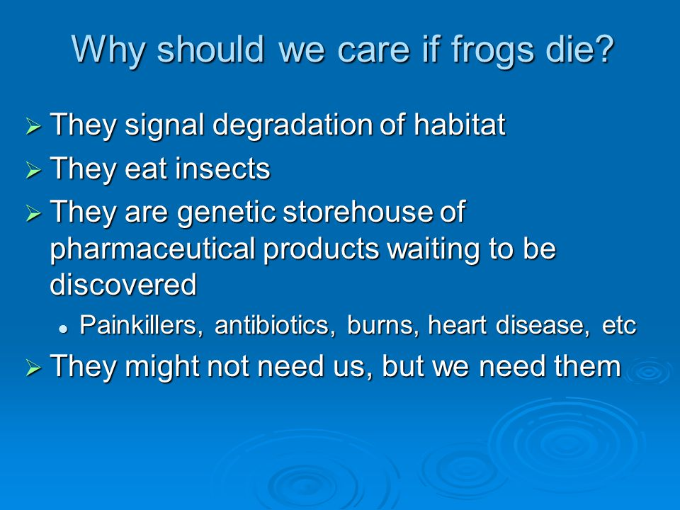 Why should we care if frogs die