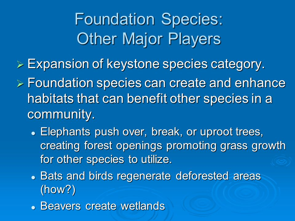 Foundation Species: Other Major Players