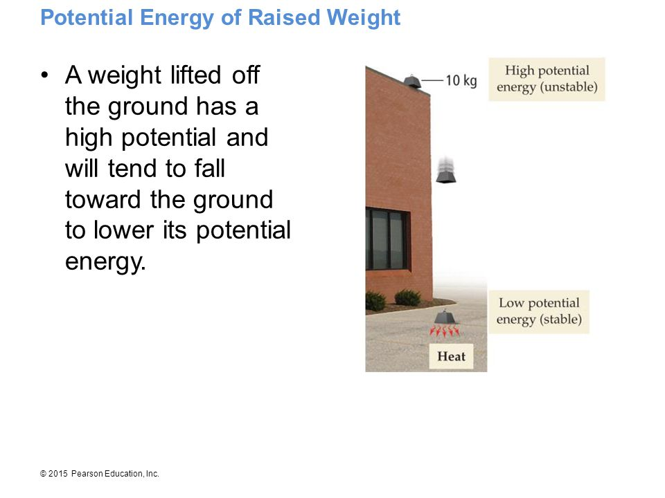 Potential Energy of Raised Weight