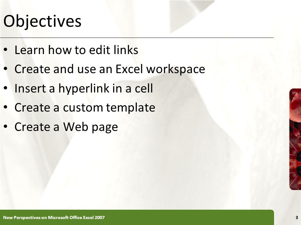 Objectives Learn how to edit links Create and use an Excel workspace