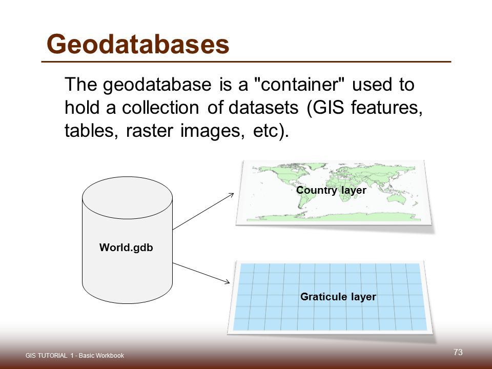 Geodatabases The geodatabase is a container used to hold a collection of datasets (GIS features, tables, raster images, etc).