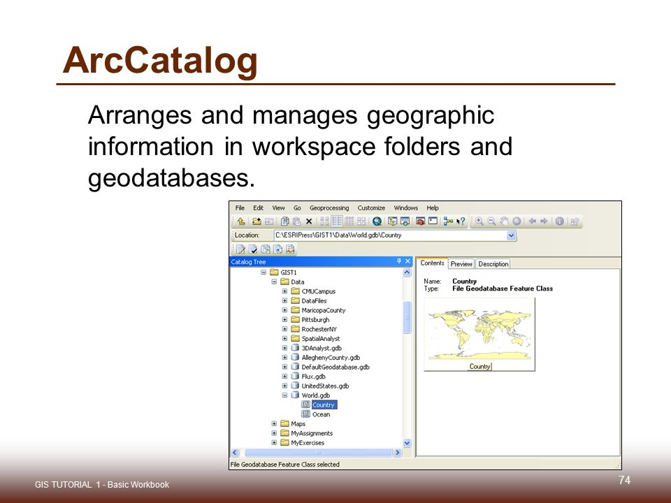ArcCatalog Arranges and manages geographic information in workspace folders and geodatabases.