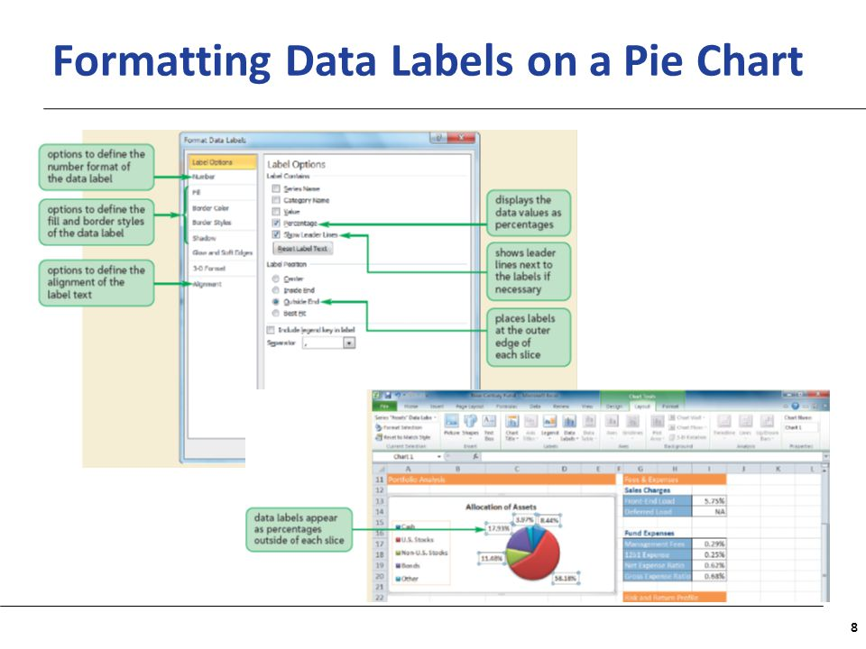Formatting Data Labels on a Pie Chart