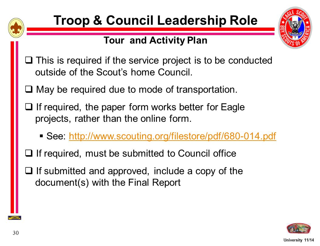 Troop & Council Leadership Role