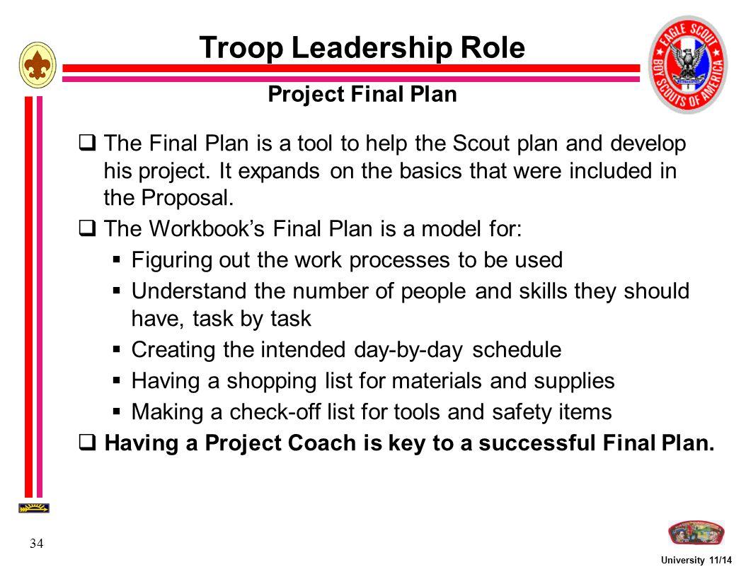 Troop Leadership Role Project Final Plan