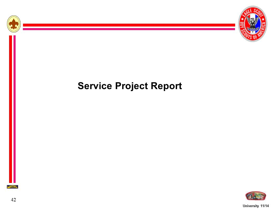 Service Project Report