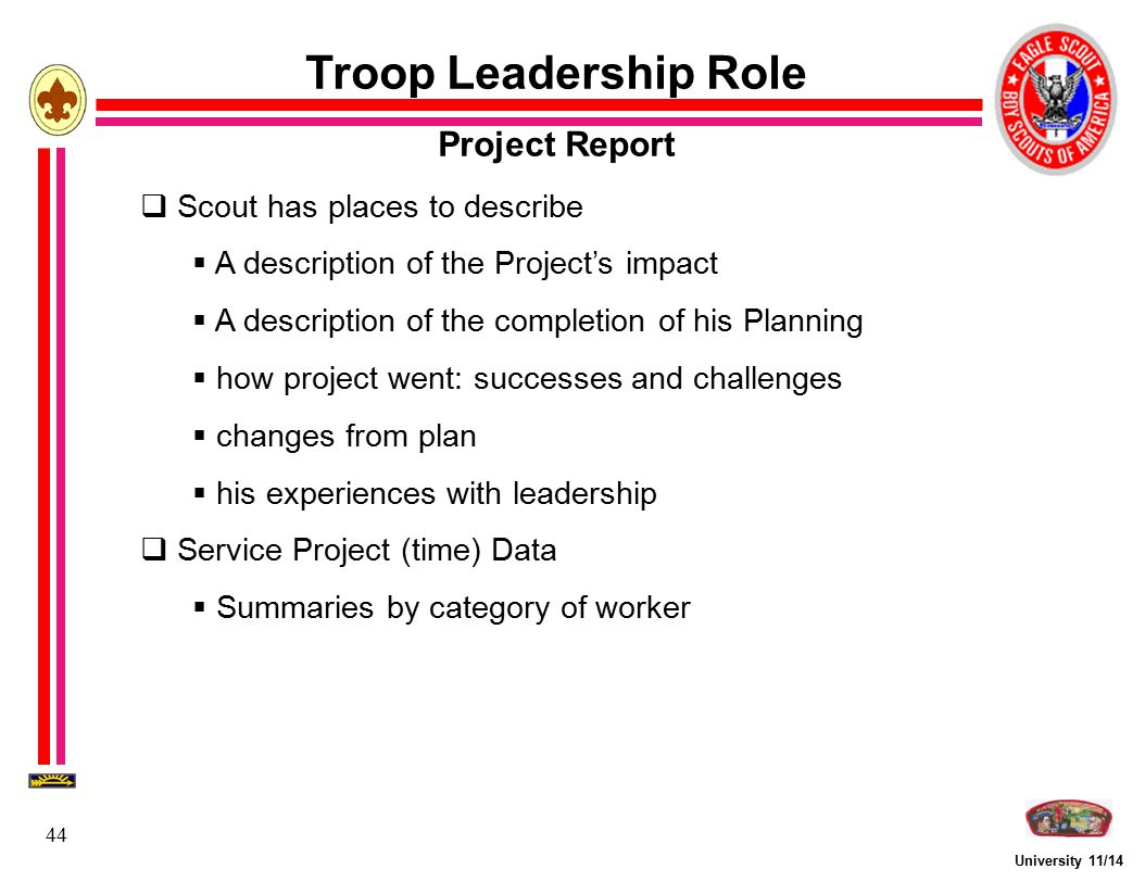 Troop Leadership Role Project Report Scout has places to describe