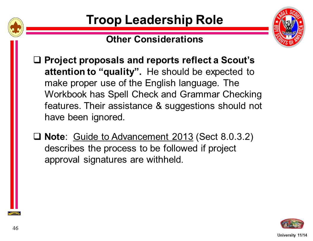 Troop Leadership Role Other Considerations