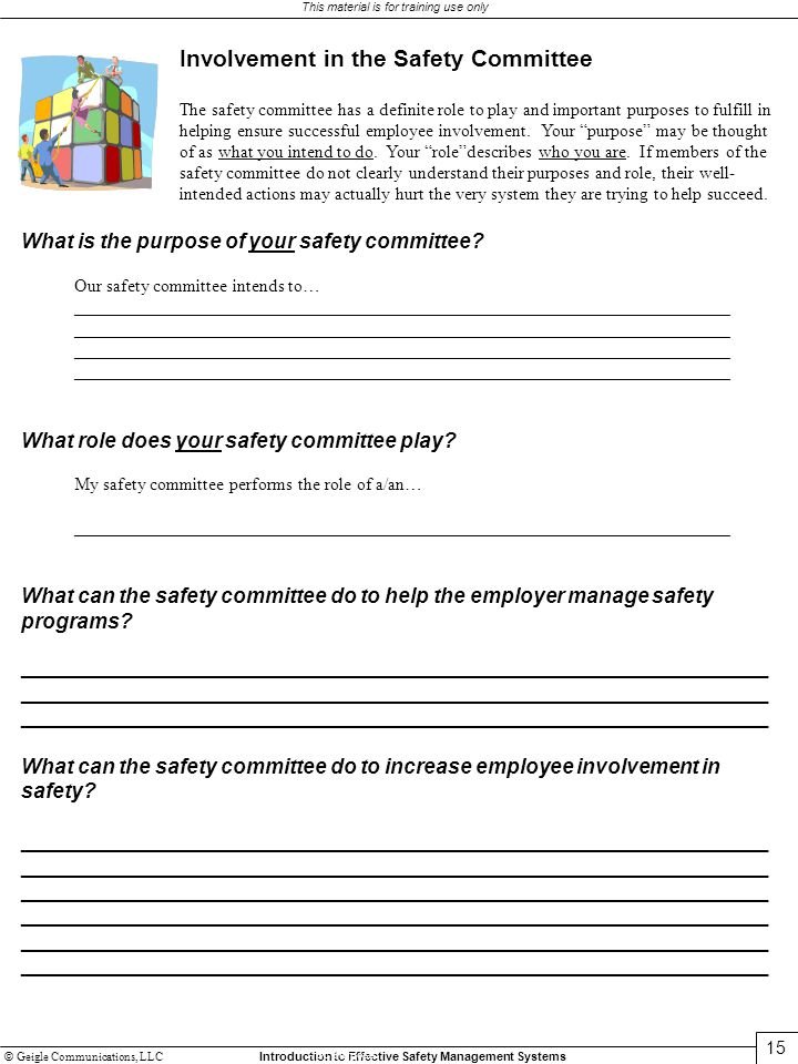 Involvement in the Safety Committee