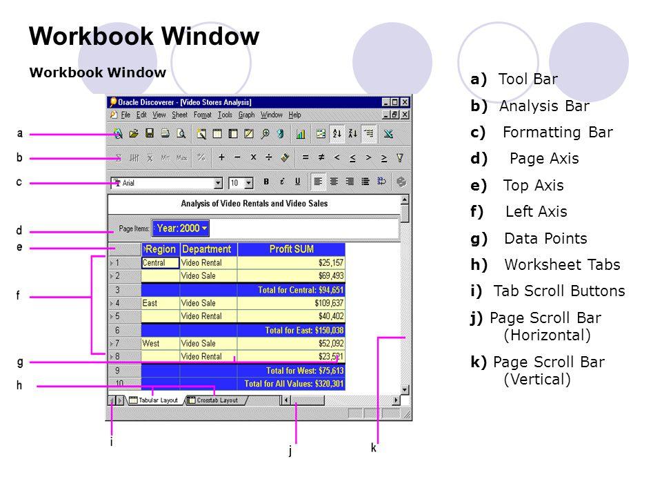 Workbook Window a) Tool Bar b) Analysis Bar c) Formatting Bar
