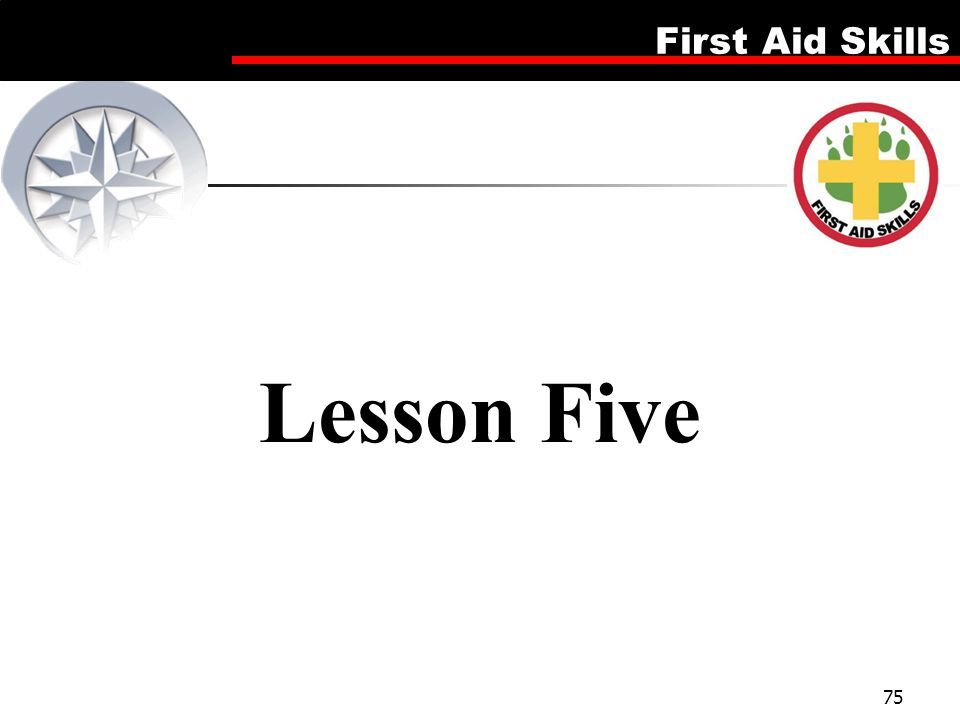 Lesson Five Firsd Aid Skills
