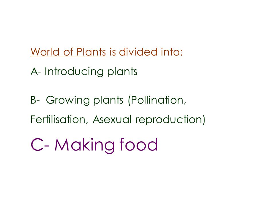 C- Making food World of Plants is divided into: A- Introducing plants