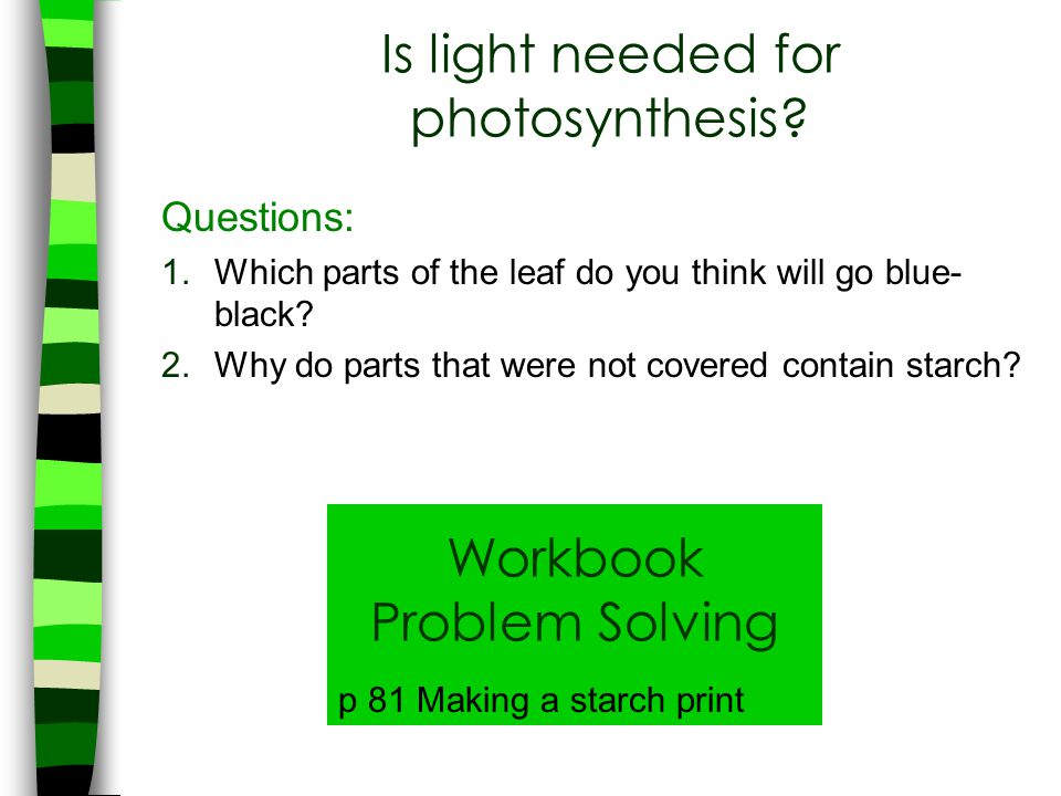 Is light needed for photosynthesis
