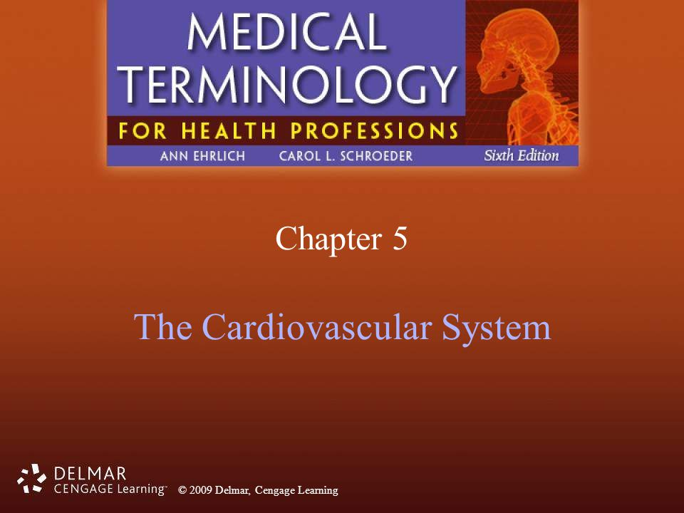 Cardiovascular system terminology worksheet answers