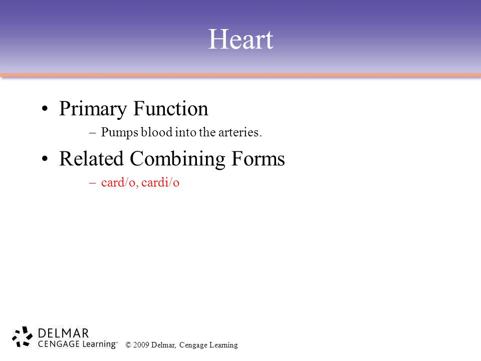 Heart Primary Function Related Combining Forms