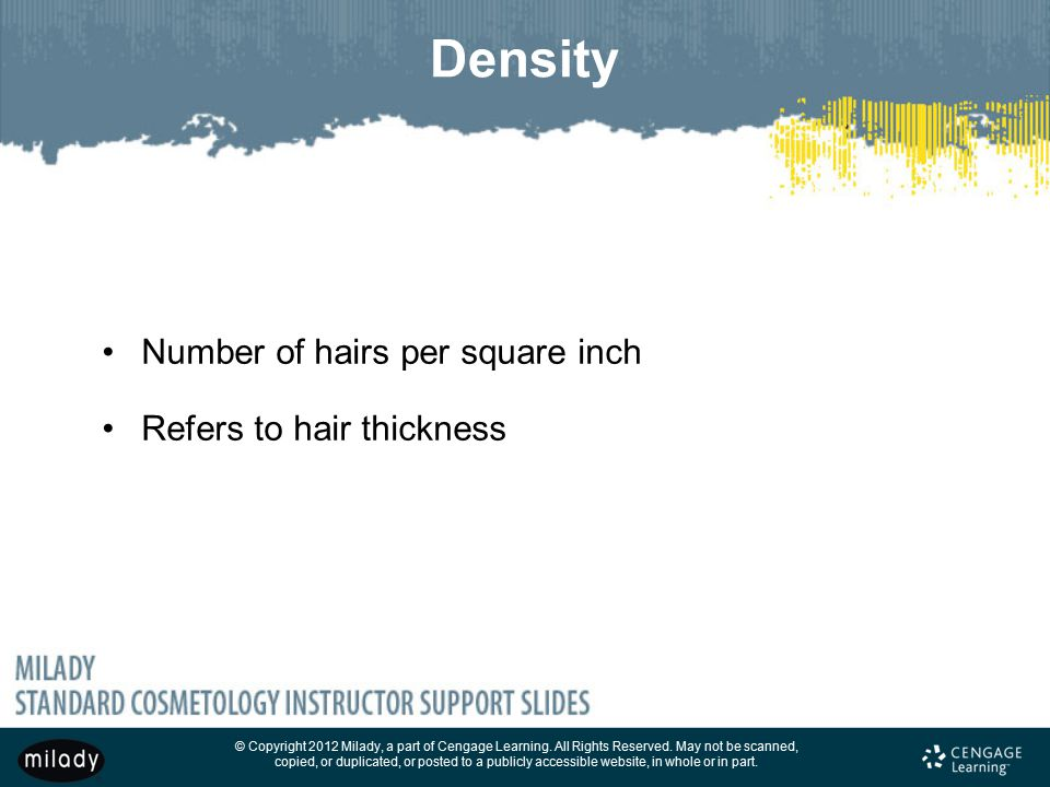Density Number of hairs per square inch Refers to hair thickness