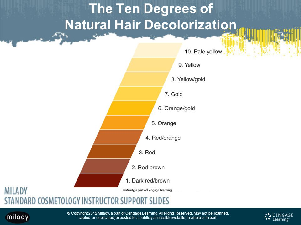 The Ten Degrees of Natural Hair Decolorization