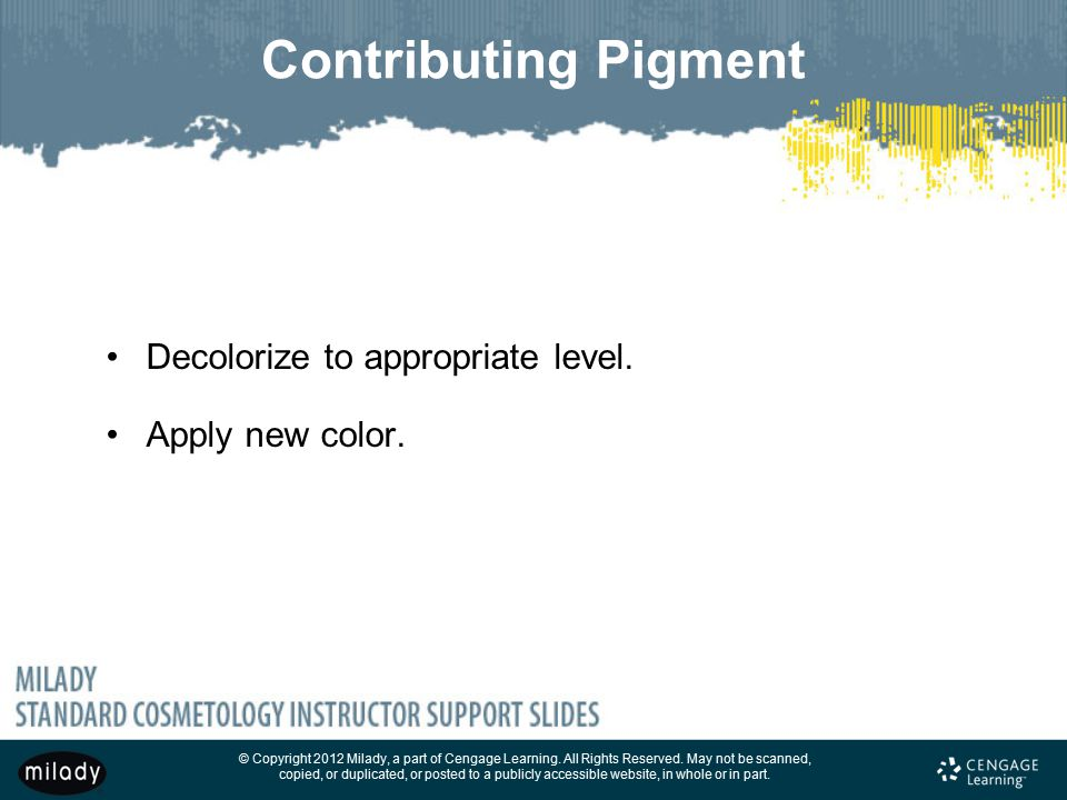Contributing Pigment Decolorize to appropriate level. Apply new color.