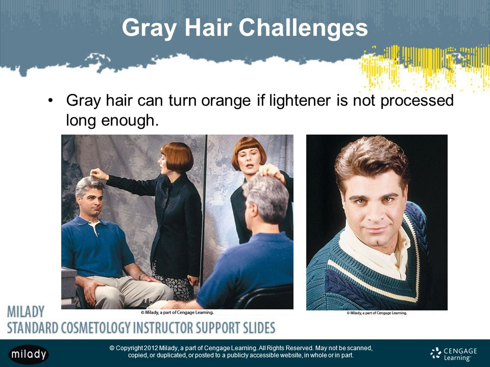 Gray Hair Challenges Gray hair can turn orange if lightener is not processed long enough.