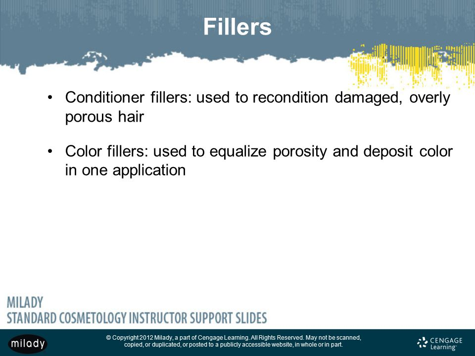Fillers Conditioner fillers: used to recondition damaged, overly porous hair.