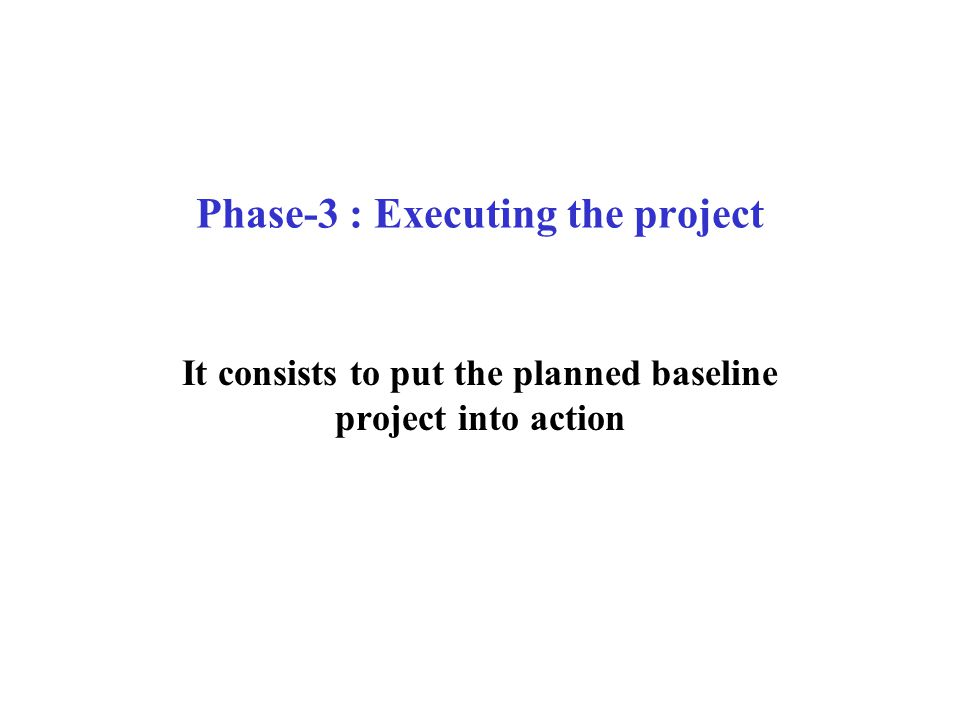 Phase-3 : Executing the project