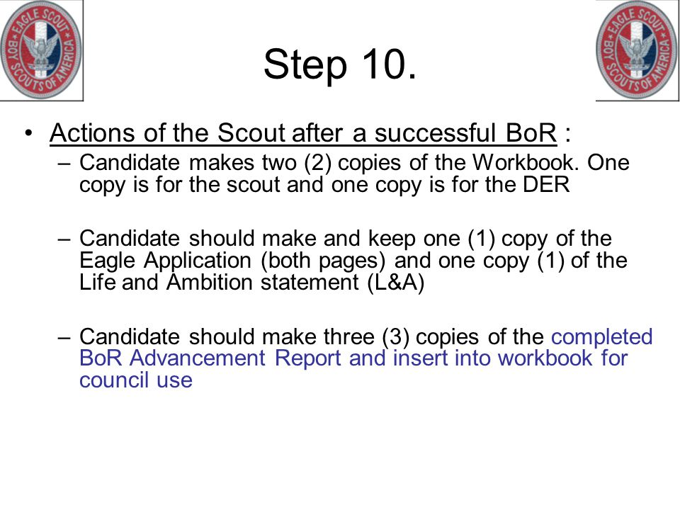Step 10. Actions of the Scout after a successful BoR :