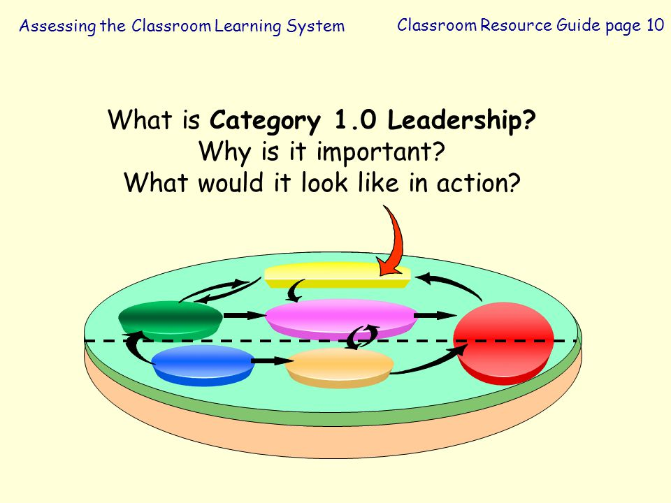 What is Category 1.0 Leadership Why is it important