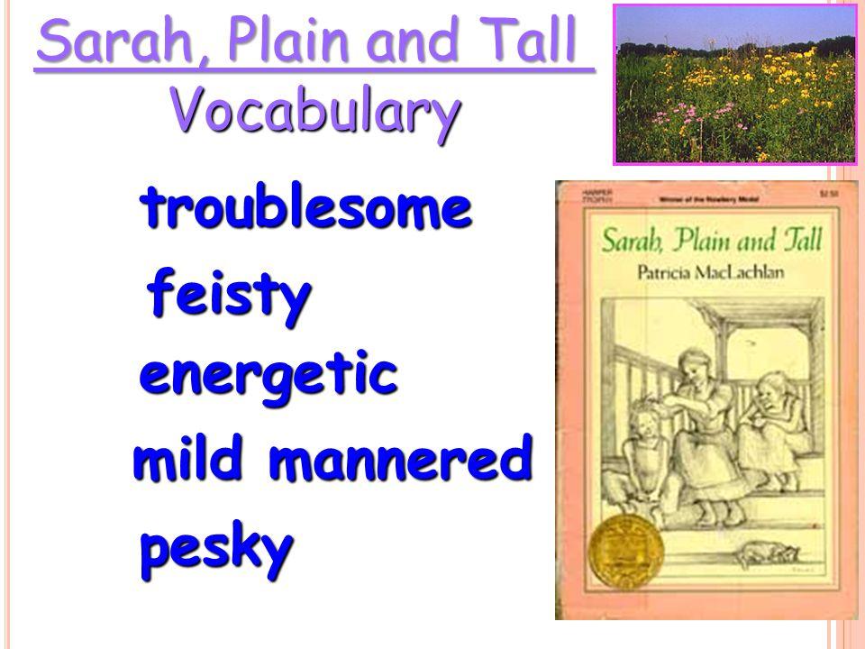 Sarah, Plain and Tall Vocabulary