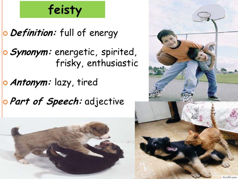 feisty Definition: full of energy