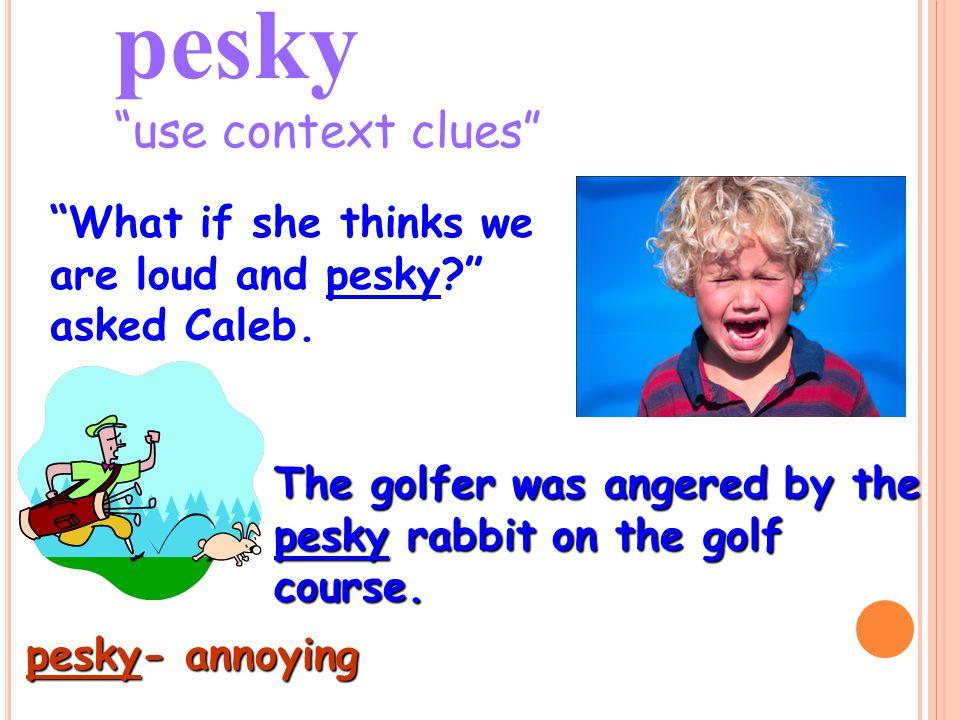 pesky use context clues