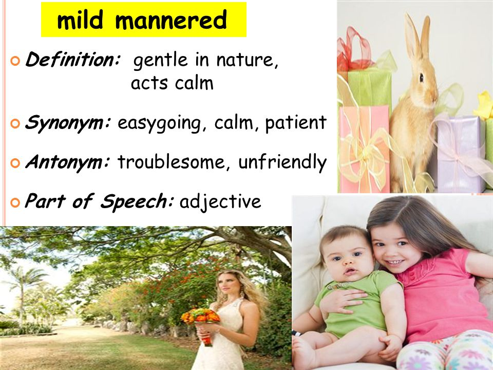 mild mannered Definition: gentle in nature, acts calm