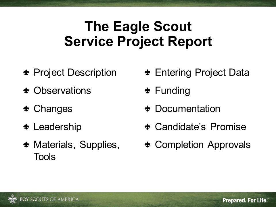 The Eagle Scout Service Project Report