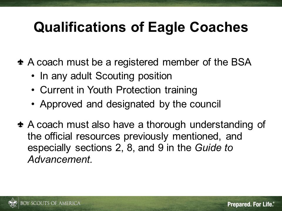 Qualifications of Eagle Coaches