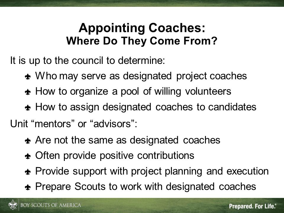 Appointing Coaches: Where Do They Come From