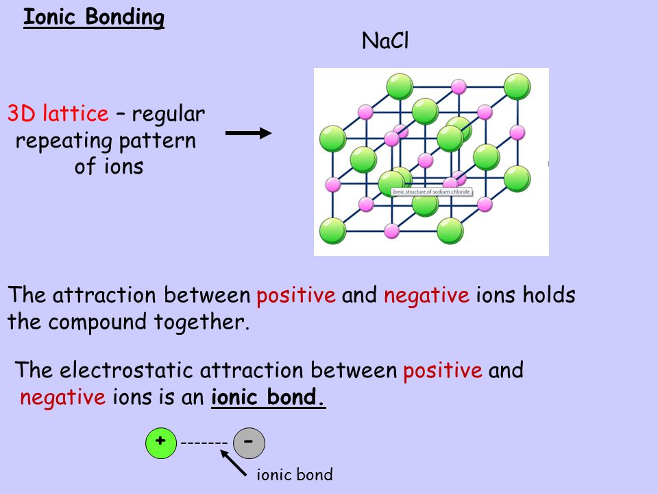 The electrostatic attraction between positive and