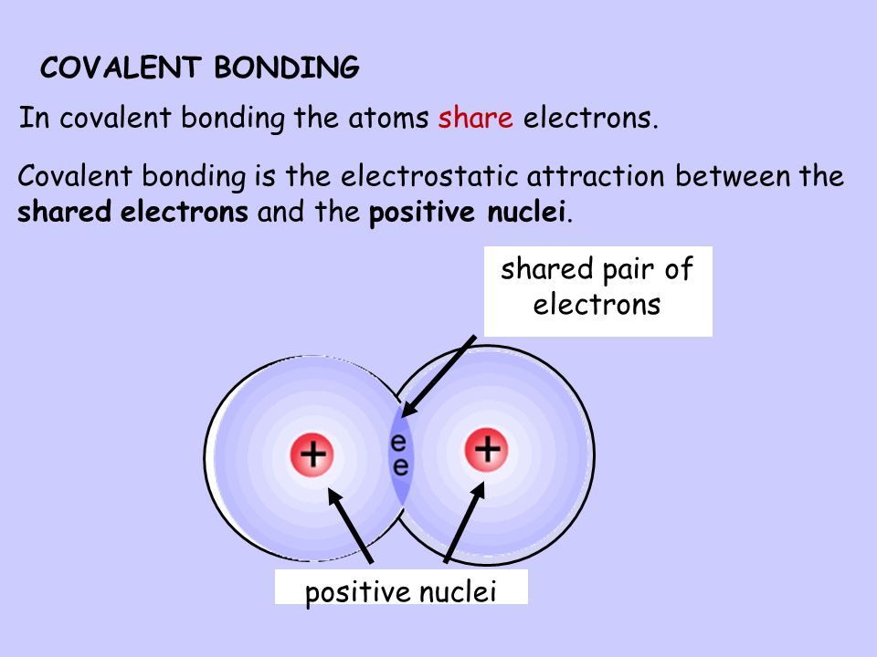 shared pair of electrons