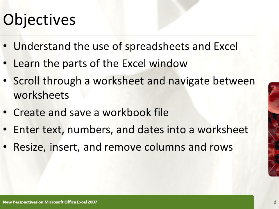 Objectives Understand the use of spreadsheets and Excel
