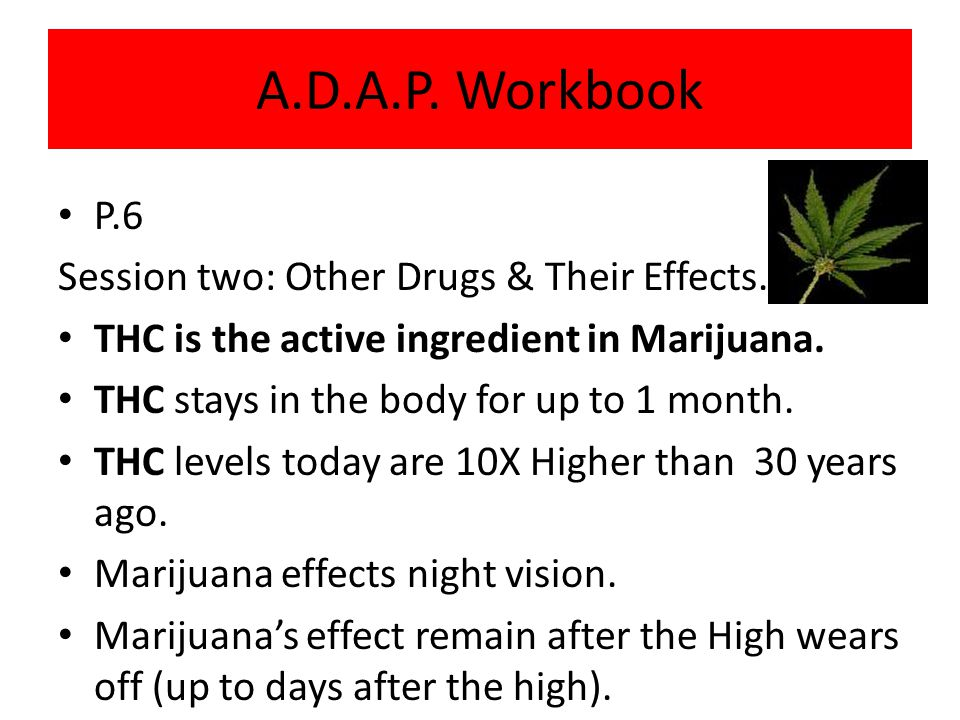 A.D.A.P. Workbook P.6 Session two: Other Drugs & Their Effects.