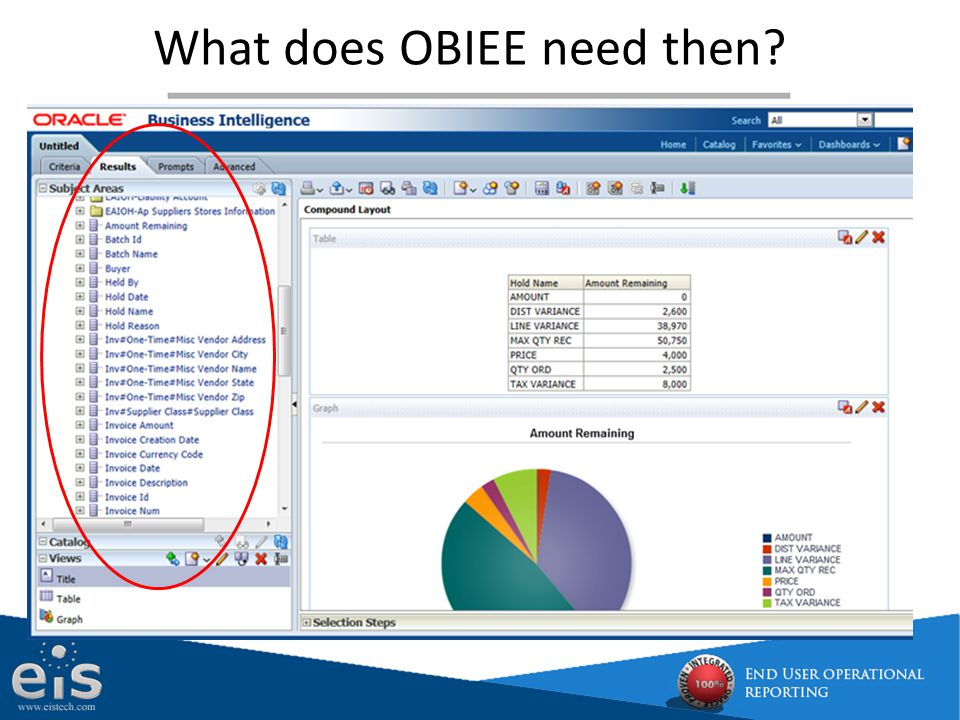 What does OBIEE need then