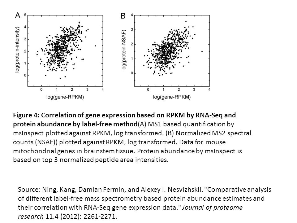 Figure 4: Correlation of gene expression based on RPKM by RNA-Seq and protein abundance by label-free method(A) MS1 based quantification by msInspect plotted against RPKM, log transformed. (B) Normalized MS2 spectral counts (NSAF)) plotted against RPKM, log transformed. Data for mouse mitochondrial genes in brainstem tissue. Protein abundance by msInspect is based on top 3 normalized peptide area intensities.