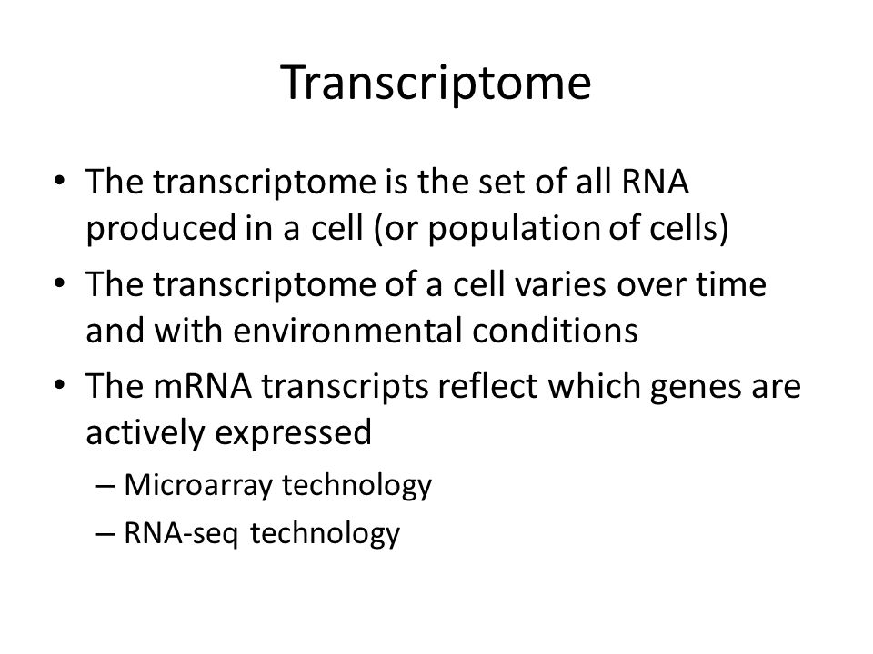 Transcriptome The transcriptome is the set of all RNA produced in a cell (or population of cells)